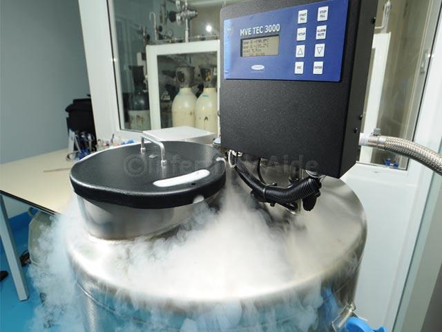 Embryo freezing - Malaysia