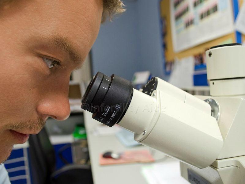 IVF labs - Denmark