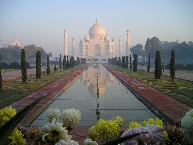 India - IVF