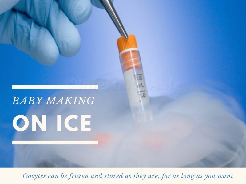 Oocyte cryopreservation cost