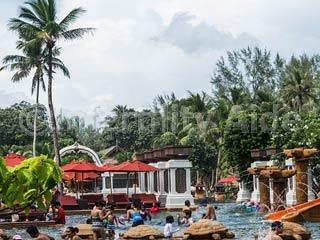 IVF in Phuket