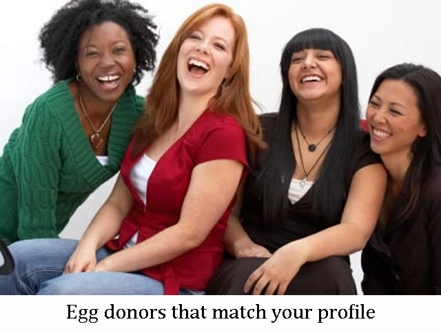 Select your egg donors in India