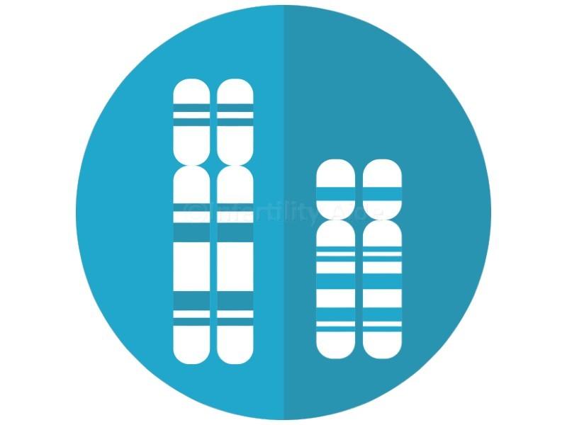 PGD for structural chromosomal defects