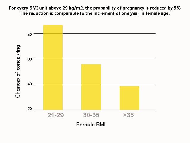 Female fertility drops with increasing BMI