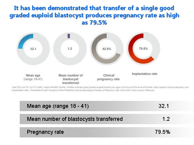 High success with single embryo transfer
