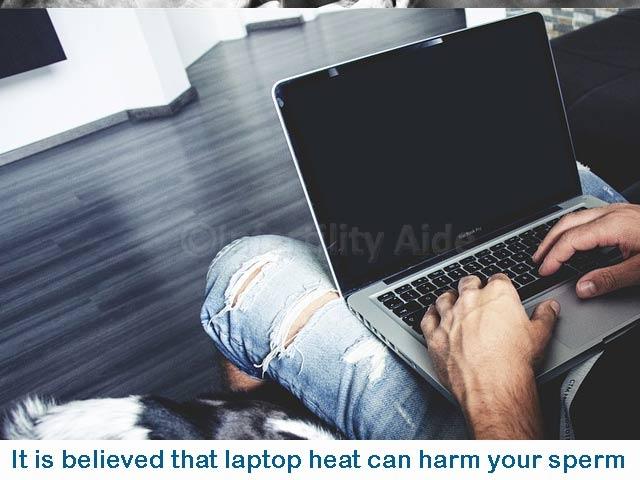 Laptop heat can harm the sperm