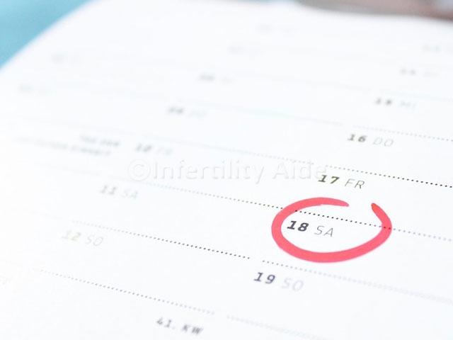 Regular periods for fertility