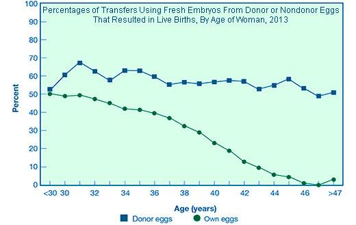 Fertility graph by female age
