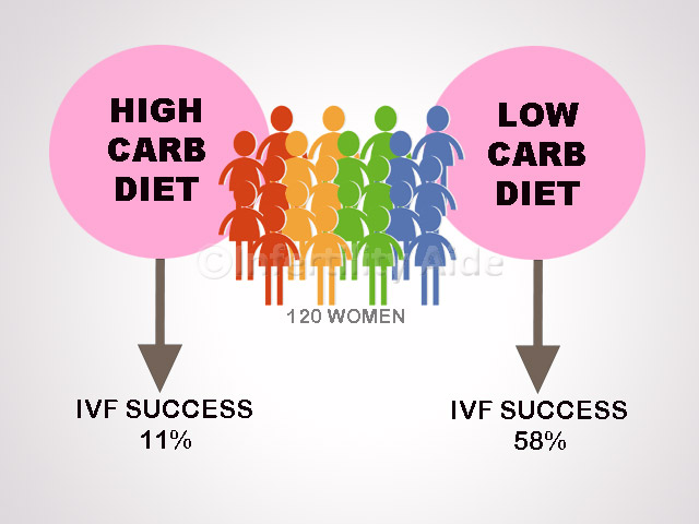 zero carb diet research